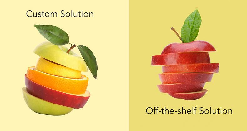 Custom vs Ready-made Solutions